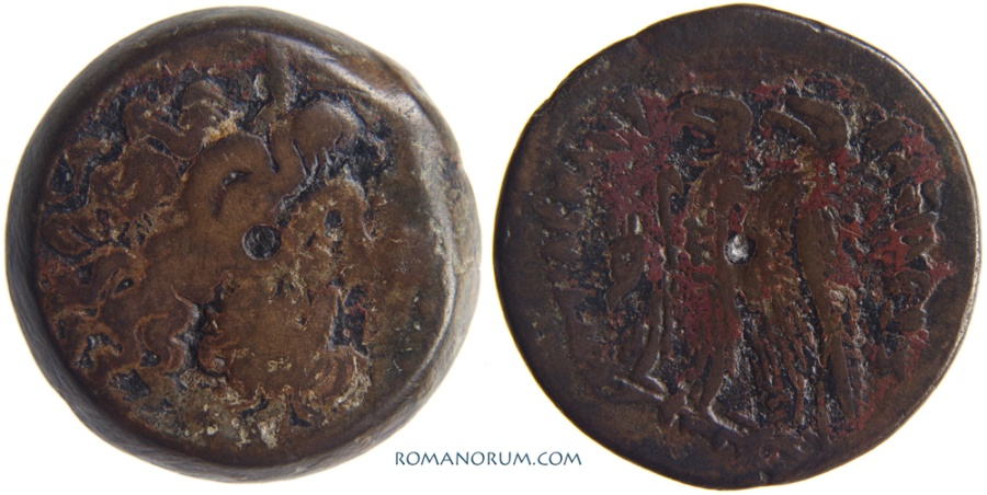 Ancient Coins - PTOLEMY VI and VIII joint rule.. AE30, 21.25g.  Alexandria. Double eagle.