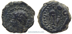 Ancient Coins - AUGUSTUS. (44 BC - AD 14) AE14, 2.06g.  Colonia Patricia, Hispania.
