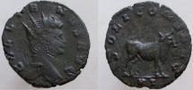 Ancient Coins - Gallienus. 253-268 AD. Antoninianus. Bull standing right.