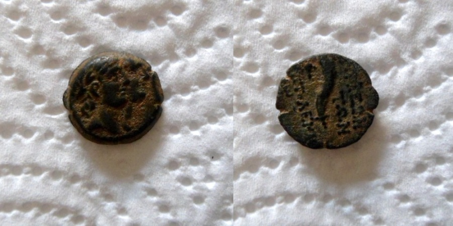 Ancient Coins - Bronze, 'Akko Ptolemais, Pre-colonial Civic Coinage, 169–164 BC,