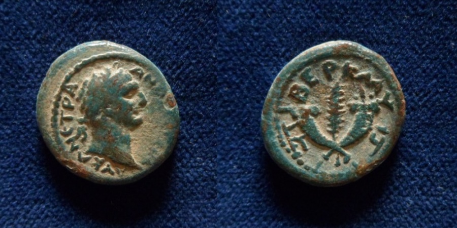 Ancient Coins - GALILAEA, Tiberias. Trajan. 98-117 AD. Æ 20mm (5.8gm). Year 81 (99/100 AD).