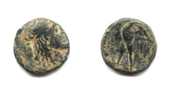 Ancient Coins - Phoenicia, eagle standing AE 15.5.
