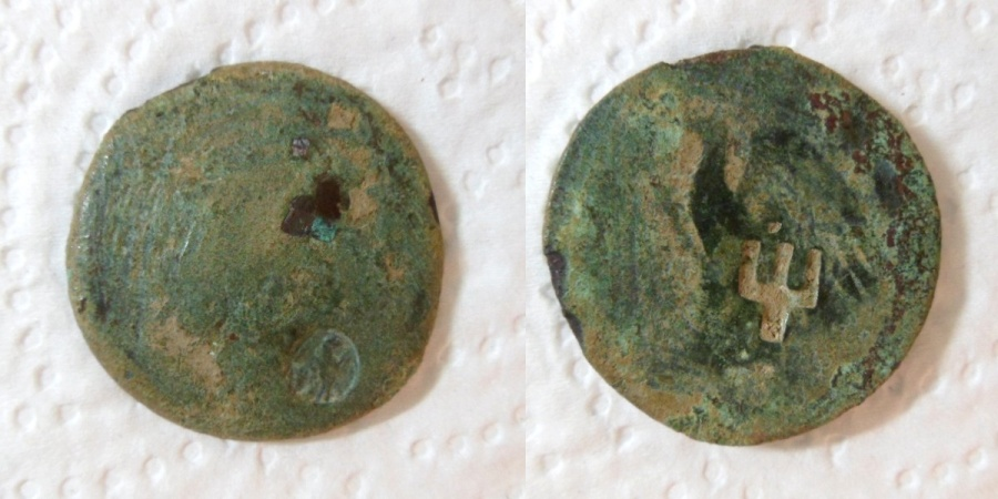 Ancient Coins - PTOLEMAIC KINGS OF EGYPT. Ptolemy III Euergetes (246-221 BC). Ae. Alexandria.(2 countermarks )