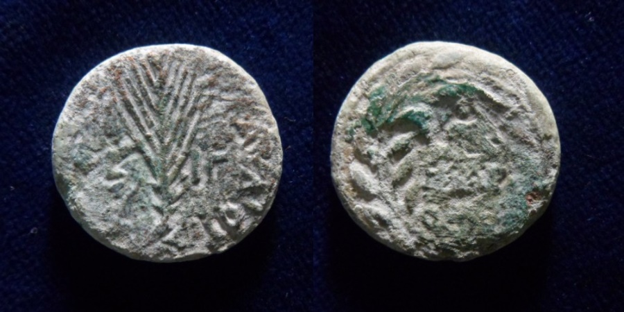 Ancient Coins - Agrippa II (49/50 - 94/95 AD). Pre-Royal series. Mint of Tiberias.