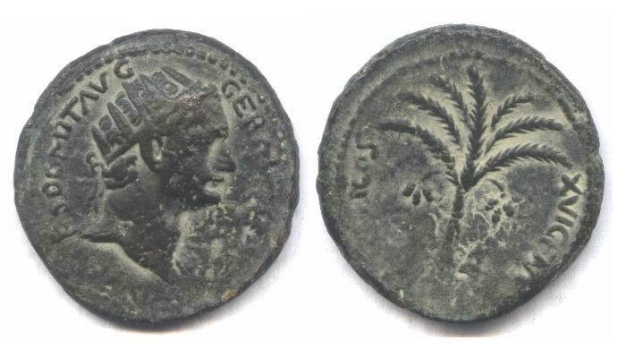 Ancient Coins - Domitian Judaea Capta PALM TREE, Local Issue