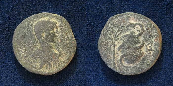 Ancient Coins - PHOENICIA, Tyre. Elagabalus AE28mm