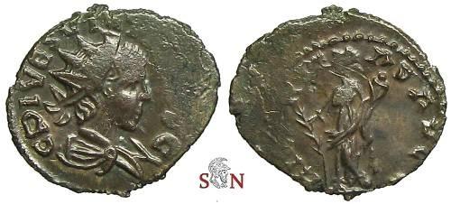 id petit romaine 8MtJErT4R7xKLeN386qS9XtszcH257