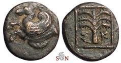 Ancient Coins - Troas, Skepsis - AE 11 mm - Pegasos - Palmtree - SNG Cop 477