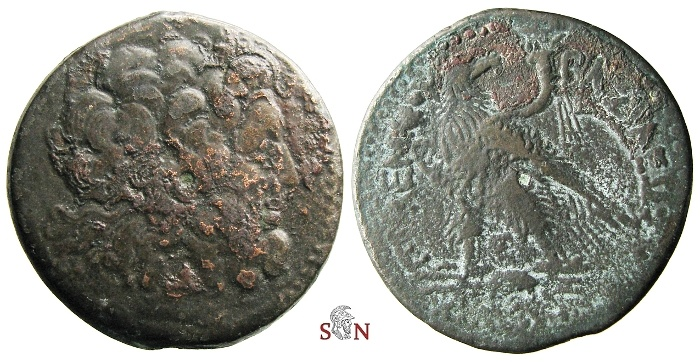 Ancient Coins - Ptolemy IV AE 39 mm - Zeus Ammon / Eagle - SNG Cop. 210