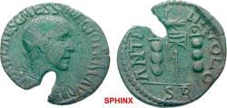 Ancient Coins - 433FFAK19) PISIDIA Antioch Trajan Decius AD 249-251. Bronze (AE; 21-24mm; 5.67g; 6h) IMP CAES C MESS Q DECIO TRAI AV Radiate, draped and cuirassed bust of Trajan Decius to right.