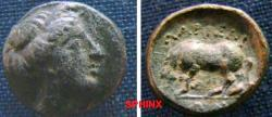Ancient Coins - 566EK0) THESSALY, Larissa. Circa 380-337 BC. AE 12mm (1.26 g, 6h). Head of the nymph Larissa right / Horse standing left, about to roll; A below. Rogers 296; SNG Copenhagen 144. VF