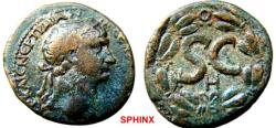 Ancient Coins - 577HM3) Seleucis and Pieria. Antioch. Trajan. AD 98-117. Æ As (29 mm, 15.55 g, 12h). H = YEAR 10 = 106-107 AD. Laureate head right / Large S•C; H below; all within laurel wreath.