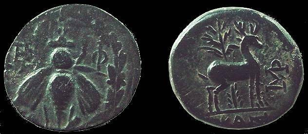 Ancient Coins - 494GREEK) Ephesos AE 19mm 4,56g ca. 202-133 BC Bee in wreath, E Rv., palm tree behind stag, monogram in right field: under ex.: Head p.575; LINDGREN # 455; VF BEAUTIFUL PATINA.