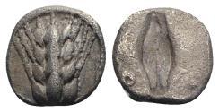 Ancient Coins - ITALY. Southern Lucania, Metapontion, c. 470-440 BC. AR Diobol. Barley-ear with four grains. R/ Incuse barley grain