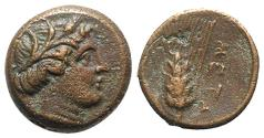 Ancient Coins - ITALY. Southern Lucania, Metapontion, c. 300-250 BC. Æ 13mm. Wreathed head of Demeter. R/ Grain ear