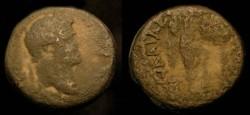 Ancient Coins - Vespasian 69-79 AD. AE 20. Caesaria. Judaea Capta. Rare