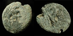 Ancient Coins - > Ptolemaic Kingdom. Ptolemy IX. First reign, 116-106 BC. AE 20. Svoronos 1698