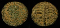 Ancient Coins - City Coins of Judaea. Neapolis. Domitian / Palm Tree. AE 20
