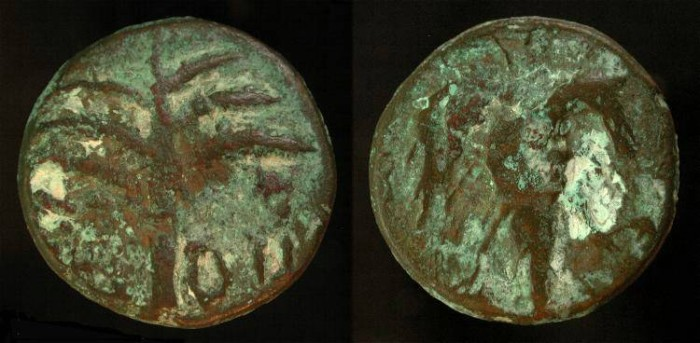 Ancient Coins -  Judaea. Bar Kochba Revolt, 133/134 AD. Middle Bronze. Year Two