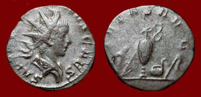 Ancient Coins - Saloninus Caesar (Son of Gallienus) 258-260 AD. Antoninianus