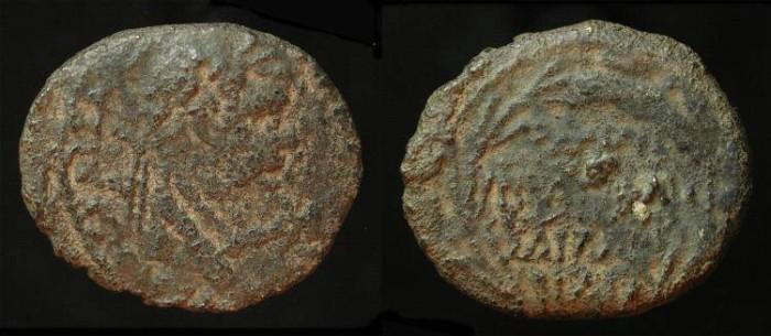 Ancient Coins -  City Coins of Judaea. Samaria, Neapolis. Domitian 81-96 AD