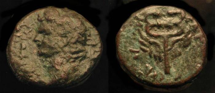 Ancient Coins - Domitian 81-96 AD. AE 15. Caesarea. Judaea Capta.