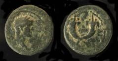Ancient Coins - > Agrippa II under Domitian. AE 17. Hendin 1291. Rare.