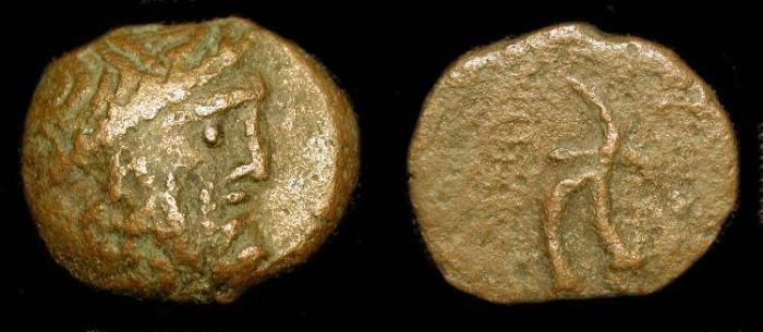 Ancient Coins - Unattributed Seleucid 23mm Bronze. Antiochus VIII ? Gaza Mint ?