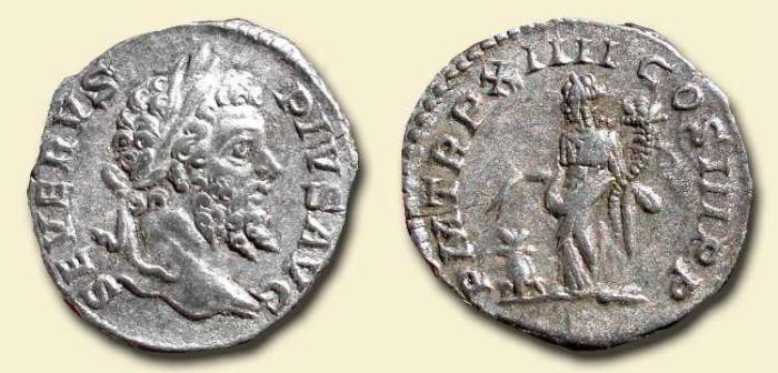 Ancient Coins - Septimus Severus. 193 - 211 AD. AR Denarius.