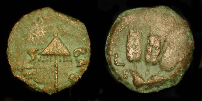Ancient Coins - Judea. Herod Agrippa I 37 - 44 AD, Bronze Prutah. Hendin 553