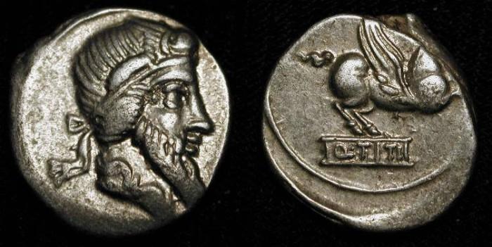 Ancient Coins - x Q. Titius. 90 BC. Silver Denarius. Priapus / Pegasus