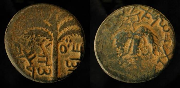 Ancient Coins -  Judaea. Bar Kochba Revolt, 132-135 AD. AE 25 Middle Bronze. Year One