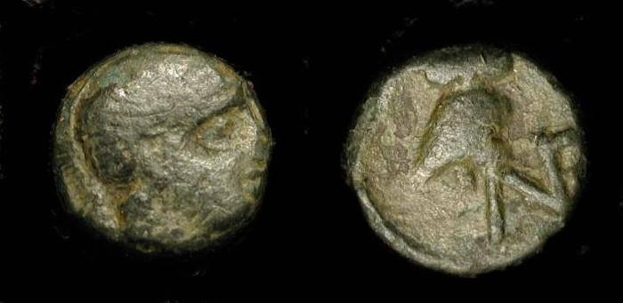Ancient Coins - Aeolis, Neonteichos. 2nd century BC. Rare