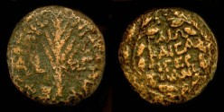 Ancient Coins - Herod Antipas  4 BC - 40 AD. AE 17mm,  1/2 unit. Hendin 1216 . Rare