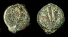 Ancient Coins - > Mattathias Antigonus 40-37 BC. AE 13. H 1164