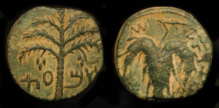 Ancient Coins - Judaea. Bar Kochba Revolt, 132-135 AD. AE 23.