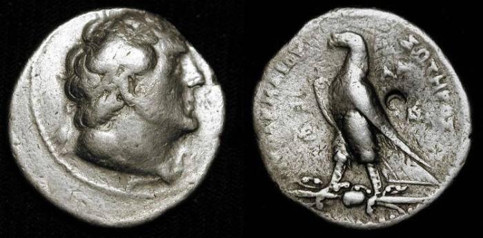 Ancient Coins - Ptolemy II  285-246 BC. AR Tetradrachme. Phoenician mint of AKE PTOLEMAIS.