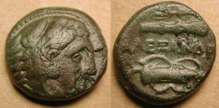 Ancient Coins - z Alexander the Great . 336-323 BC . AE 17 .