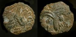 Ancient Coins - >Marcus Ambibulus, 9-12 AD. Prefect under Augustus. AE Prutah