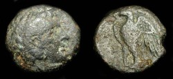 Ancient Coins - > Ptolemy I Soter 305-283 BC. AE 19. SG 7765