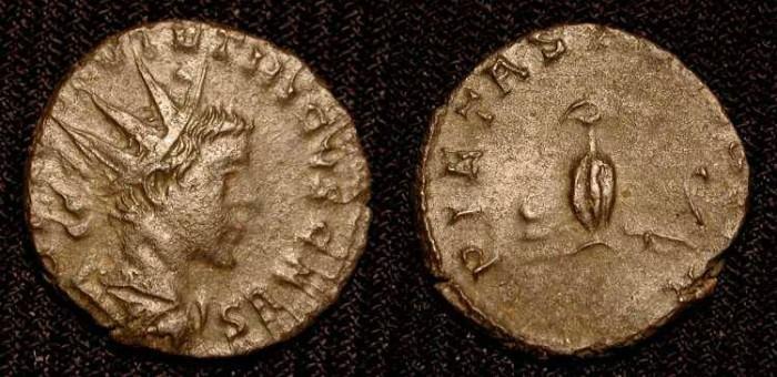 Ancient Coins - Tetricus II as Caesar 270-273 AD, AE Antoninianus