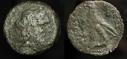 Ancient Coins -  Ptolemy VIII 145-116 BC. AE 24 (Obol).