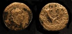 Ancient Coins - > Agrippa II under Domitian. AE 16. Hendin 1291