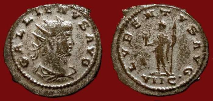 Ancient Coins - Gallienus , 253-268 AD. Silvered Antoninianus. Lubentus. Scarce Type.