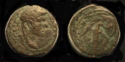 Ancient Coins - > Agrippa II under Domitian. AE 18