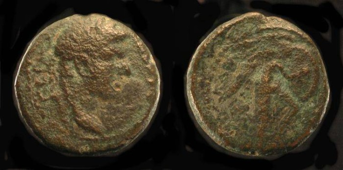 Ancient Coins -  Agrippa II under Domitian. AE 18