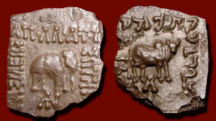 Ancient Coins -  Baktrian Kings, Apollodotos I . 160-150 BC