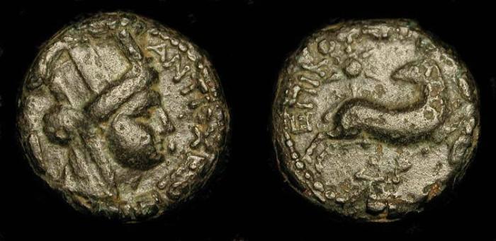 "Ancient Coins - ""Star of Bethlehem Coin"". Syria, Antiochia ad Orontem.  AE 18."