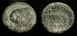 Ancient Coins - Macedonia, Pella. 187-31 BC. AE 18. Athena Parthenos / Bull Grazing