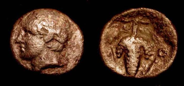 Ancient Coins - Lokris Opuntia. 338-300 BC.  AE 14mm. No Reserve